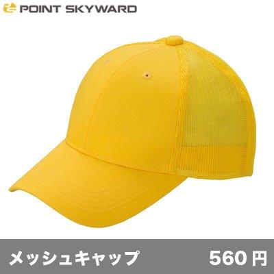 画像1: デフレメッシュキャップ [DFM] POINT SKAYWARD-ポイント スカイワード